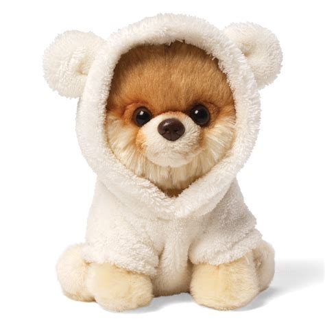 teddy puppy 404 page not found error feel like you re in the wrong place