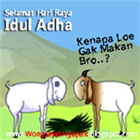 wallpaper gif kocak dp bbm idhul adha 1434 hijriyah terbaru 2013 lucu humor