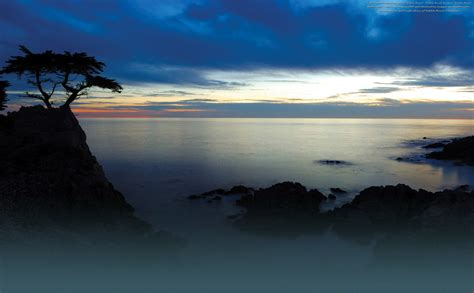 Seemonterey Com Sweepstakes - monterey hotels restaurants and things to do monterey county cvb