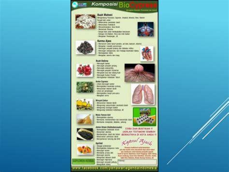 Obat Bio 0815 7109 993 biocypress kupang jual bio cypress obat