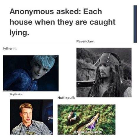 Harry Potter House Meme - 3558 best images about harry potter on pinterest