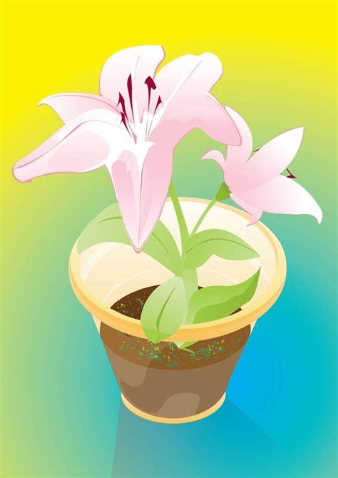 regalo fiori fiori da regalo scaricare vettori gratis