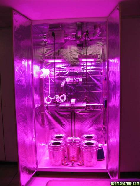 under cabinet grow light trichtones first grow xj 13 and pk 600w led