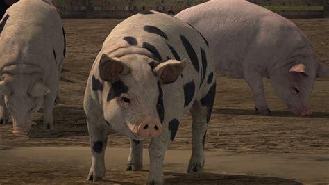 Kkpk 2 Of Me New farming simulator 17 les cochons d 233 barquent journal paysan breton
