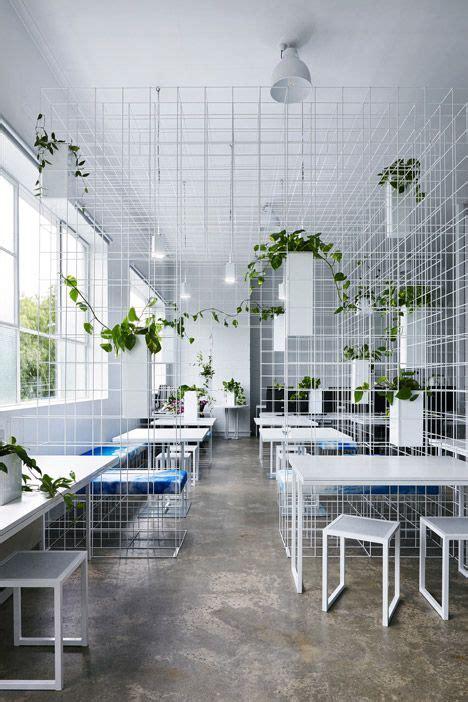 scaffale divisorio divisorio scaffale con piante molto luminoso ufficio