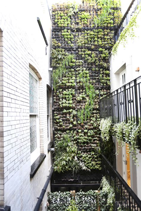 10 reasons to vertical gardens