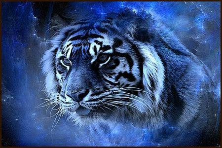 harimau putih prabu siliwangi ipan zulfikri