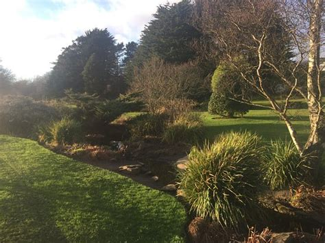 Barnhill Rock Garden Barnhill Rock Garden νταντί σκωτία κριτικές Tripadvisor