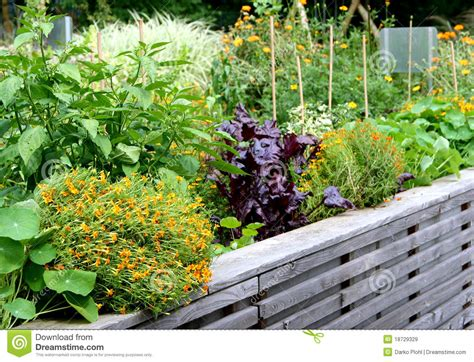 Flowers In Vegetable Garden High Vegetable Garden Bed Royalty Free Stock Images Image 18729329