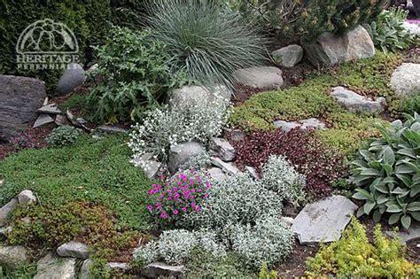 best rock gardens american rock garden society perennial gardening