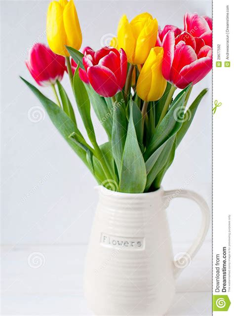 Care For Tulips In Vase by Vases Design Ideas Forcing Bulbs Growing Tulips In A Vase Thesassylife Tulips In A Vase Care