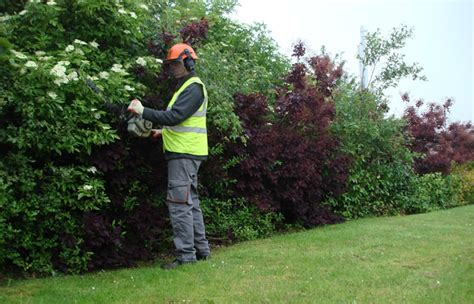 Landscape Management Landscape Management Consultancy Professional Advice On