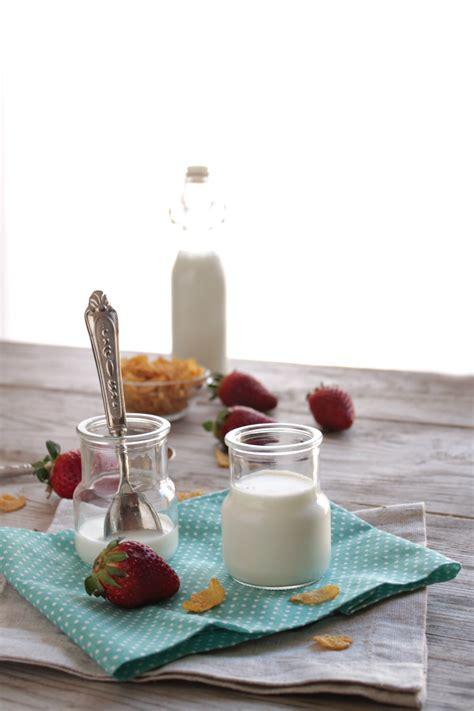yogurt fatto in casa bimby yogurt fatto in casa senza yogurtiera creazioni in