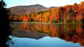 fall colors in fall foliage