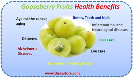 fruit health benefits gooseberry fruit nutrition facts health benefits