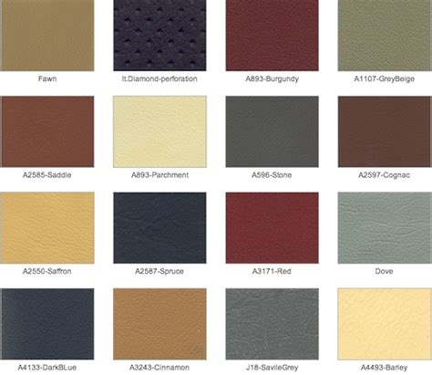 dynamix jaguar leather colours