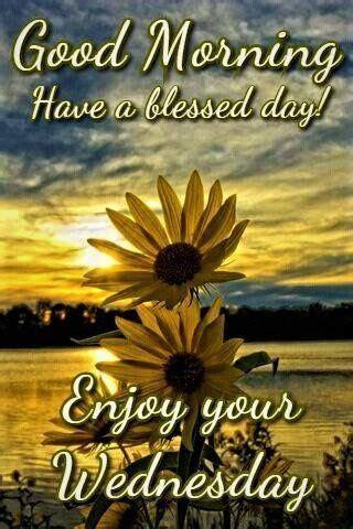 sunrise sunflower good morning enjoy  wednesday pictures   images  facebook
