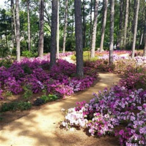 Raleigh Botanical Garden Wral Azalea Gardens 24 Photos Botanical Gardens 2619 Western Blvd Raleigh Nc Phone