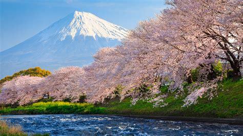 2048x1152 amazing beautiful places 2048x1152 resolution hd 2048x1152 sakura river japan 2048x1152 resolution hd 4k