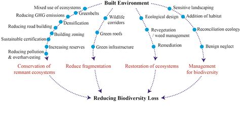 buy research paper online mass destruction of ecosystems