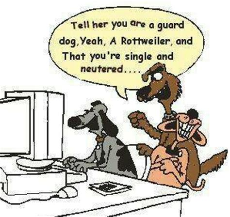 rottweiler jokes rottweiler jokes kappit