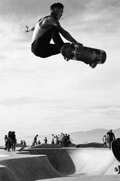 38 best images about skate on pinterest