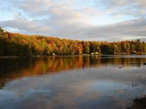 Dickie Lake Cottages For Sale by Muskoka Dickie Lake Cottage For Sale In Baysville Ontario