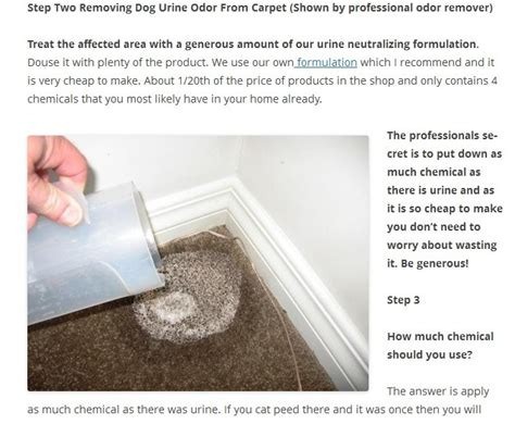 how to remove dog urine smell from house ken the odor dude shows how to remove dog urine odor from a carpet easily and
