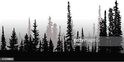 treeline  north high res vector graphic getty images