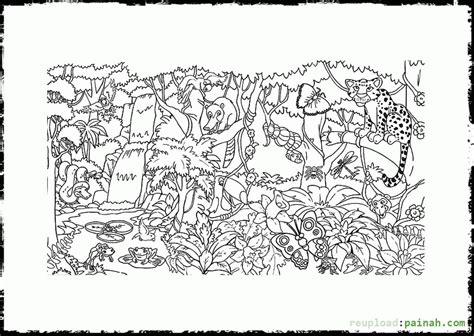 coloring page of a rainforest tropical rainforests coloring pages coloring home