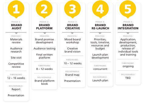 brand management plan template council templates and brand identity on