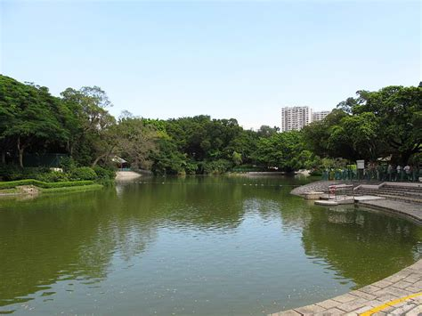 model boats hong kong tuen mun park the largest public park in the new