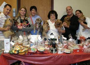 yorkie rescue pittsburgh events