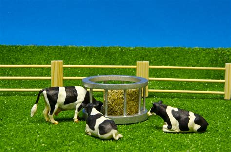 Set Catte cattle feeder set kidsglobe