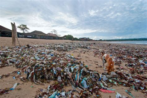 Acrylic Denpasar plastic pollution at jimbaran indosurflife