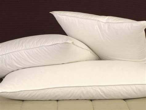 Pillowtex Pillows by Pillowtex And Feather Pillows Featured By Pacific Pillows