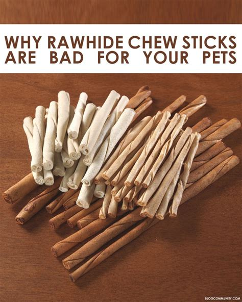 why is rawhide bad for dogs les 25 meilleures id 233 es de la cat 233 gorie rawhide chews sur chien