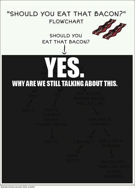 Would You Rather Eat Bacon Or Bacon Chocolate by 495 Best Bacon Bacon Bacon Images On Bacon
