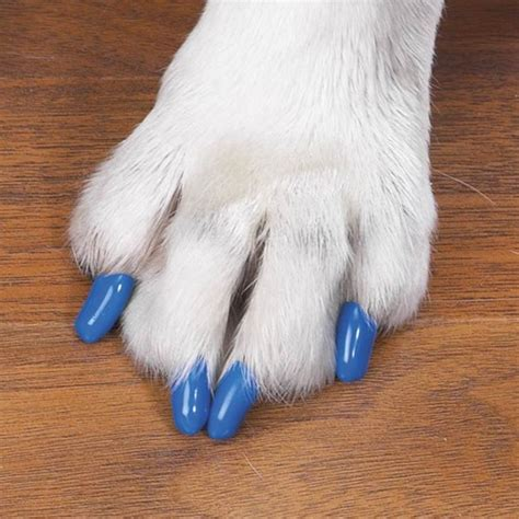 nail covers soft claws nail caps many colors accessories hair dye nail posh puppy