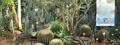 botanischer garten heidelberg universit 228 t heidelberg