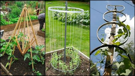 trellis from recycled materials ideas2live4