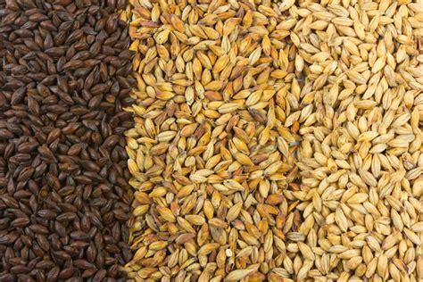 barley malt 3 vvrs australia