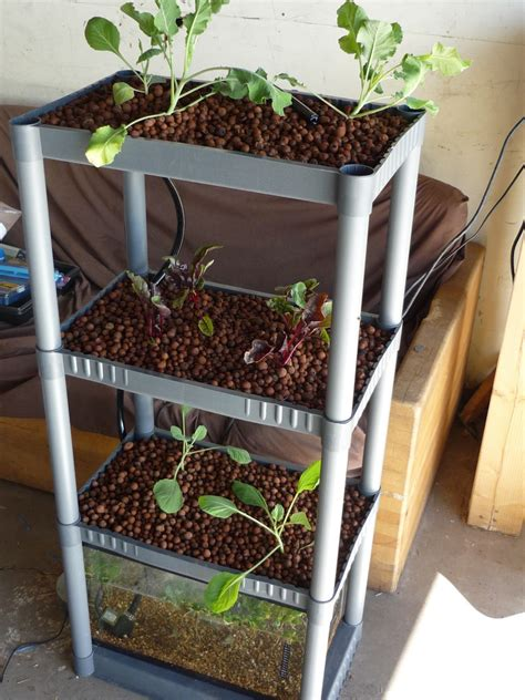 12 indoor backyard diy aquaponics system designs plans