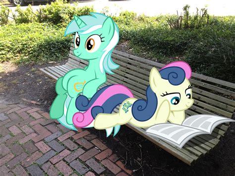 lyra bench lyra sitting on bench images