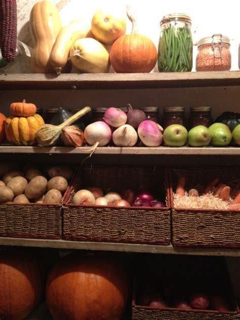 storing root vegetables make your harvest last longer by building a root cellar