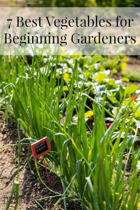 beginning vegetable gardening 7 best vegetables for beginning gardeners