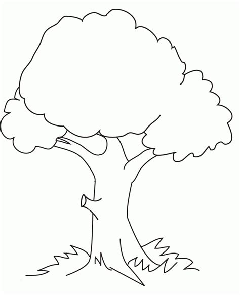 Kids Coloring Pages Trees Az Coloring Pages Tree Coloring Page