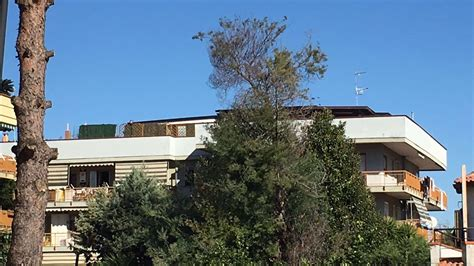comune di marano di napoli ufficio tecnico marano il proliferare di tettoie che diventano a