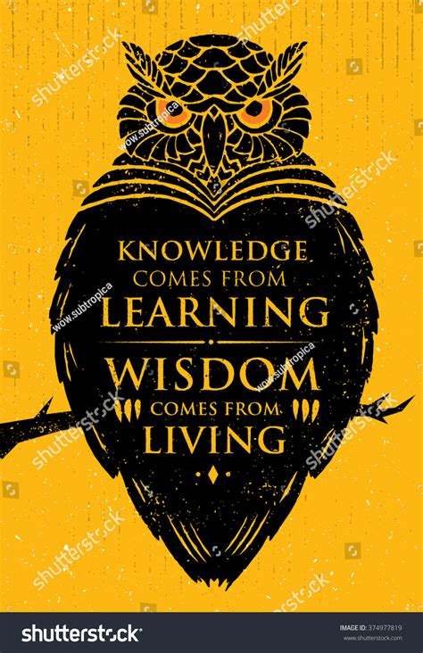 How To Live A Search For Wisdom From Knowledge Comes From Learning Wisdom Comes From Living Inspiring Creative Motivation