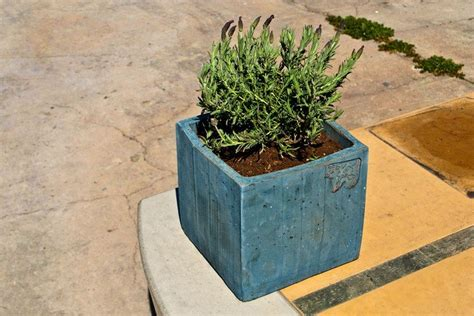 Diy Concrete Planter by How To Make Your Own Concrete Planter The Owner Builder